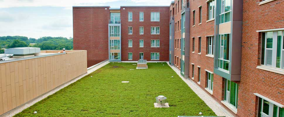 4 Reasons Green Roofs Do A Building Good Sustainability