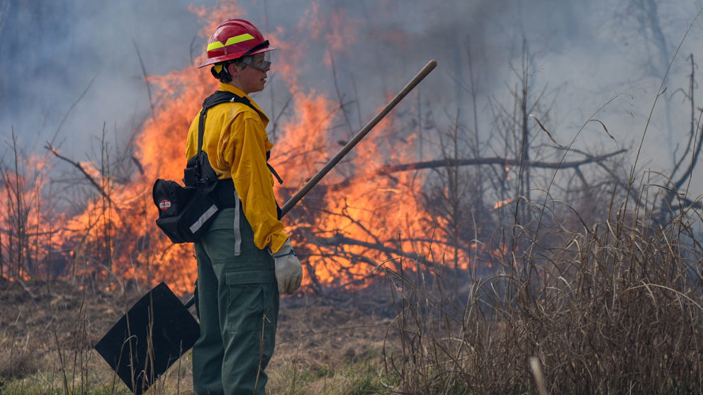 Woman in protective gear and holding a shovel looks at fire and smoke from a controlled burn.