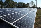 Carter Finley Solar Pic