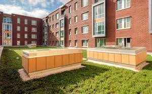 Wolf Ridge apartments feature a green roof that reduces the building's heat absorption and filters stormwater.